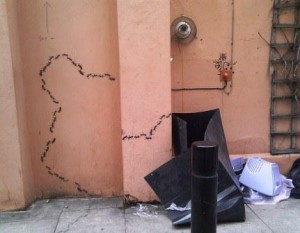 Shoreditch Graffiti -- Ants Compressed