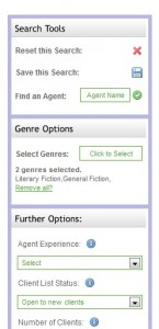 The Agent Hunter Search Box